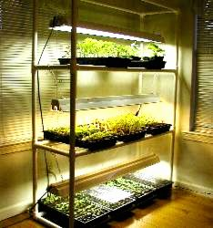 pvc greenhouse shelf plans