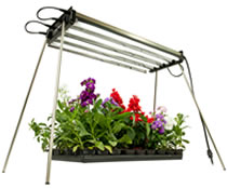 fluorescent grow light system