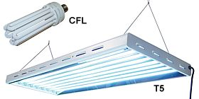 Superieur ACF Flourescent Grow Lights